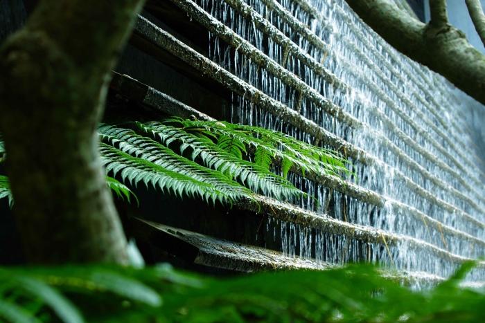 薰之园有着一幕景观水墙,气势宏伟的水墙自高处上流下,配上五彩的走灯效果,有如倾泻中的五彩瀑布,所产生的负离子更是让人精神为之一震,也是每个人必定逗留摄影之地。