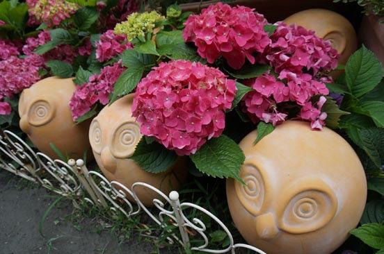 盛开的绣球花为园区增添一抹缤纷色彩。