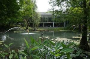在水一方,是绿建筑玻璃温室餐厅。