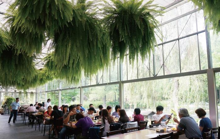 餐厅内绿意盎然,落地窗将园区的美景一览无遗,让人拥有最美的用餐心情!