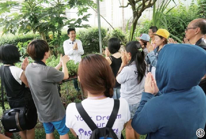 文平在教大家怎么使用天然香草提神。