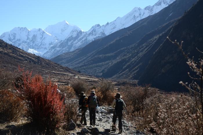 徒步和登山不同的是,徒步是指短距离步行活动,不需要攀爬山峰。