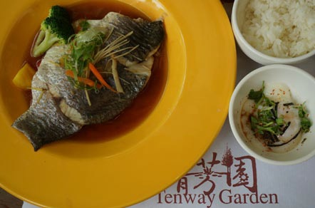 我们当天的主餐为清爽可口的清蒸金目鲈鱼。