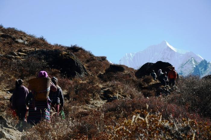 一路上遇见最多的不是徒步者,而是山里居民,有的单行,有的群体。