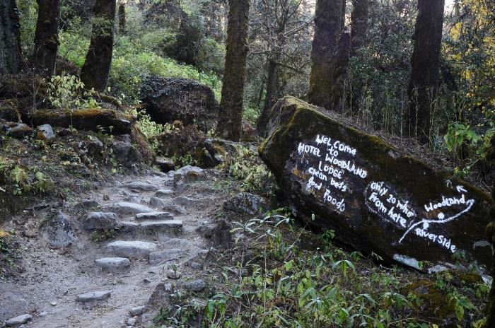 偶见树林里的广告,这也是对徒步者停下休息的小提醒。