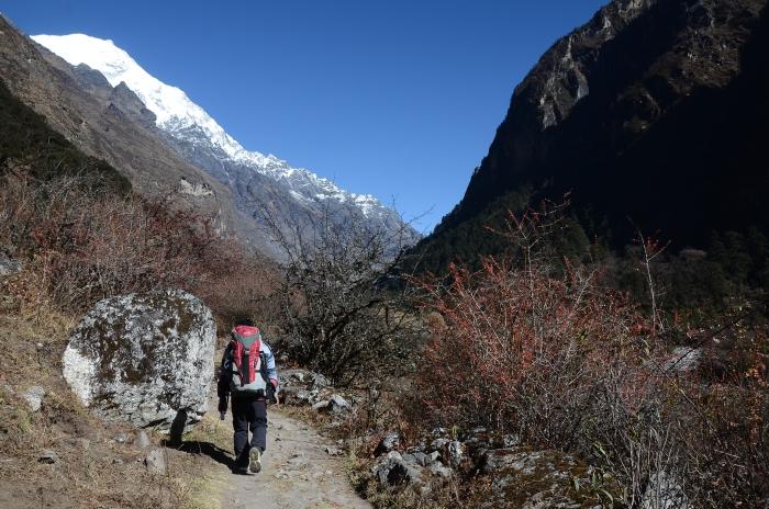 一到3000m的海拔高度,地形就变得开阔。