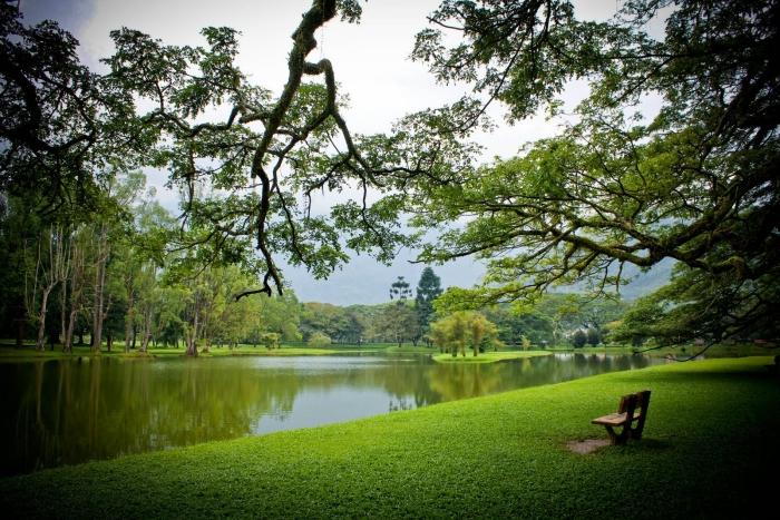 太平湖是太平的象征。 一个让能够让你的颐神养性的好地方,看那清晨的居民们环湖晨跑,午后,又漫步在绿树成荫凉下,与大自然享有这时刻。