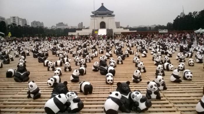 纸熊猫世界之旅,亚洲首站 Taiwan