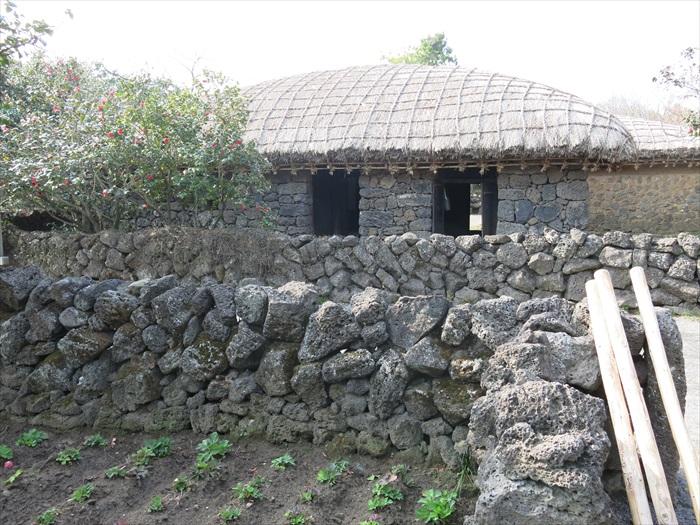 数量多,济州岛居民也广泛利用这个天然建筑素材,经常用它来建围墙、造房子。