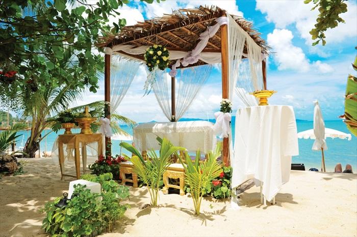 考虑到来苏梅岛的有不少情侣,Peace Resort也能为你策划沙滩婚礼。