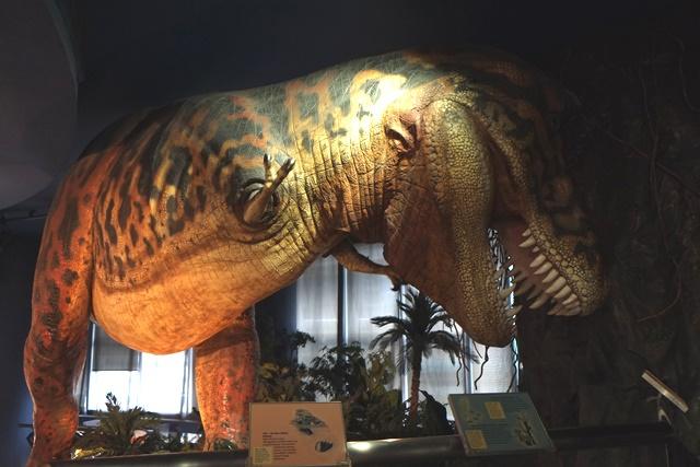 会唱饶舌的恐龙好有趣