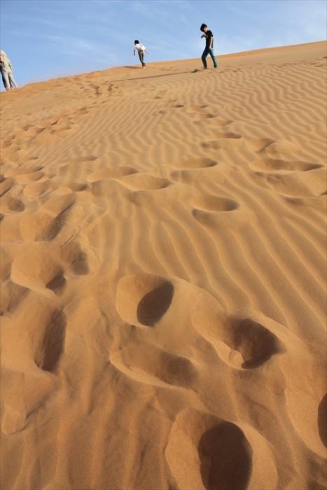 你除了可以在沙漠上行走、感受它的热情......