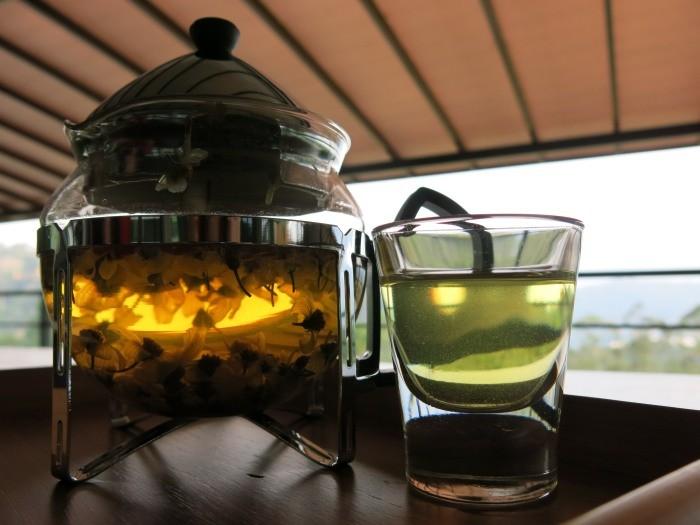 享一壶野菊花茶,让心在大自然中沉淀...