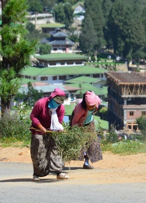 不丹清道夫对保护环境的坚持,令人肃然起敬。