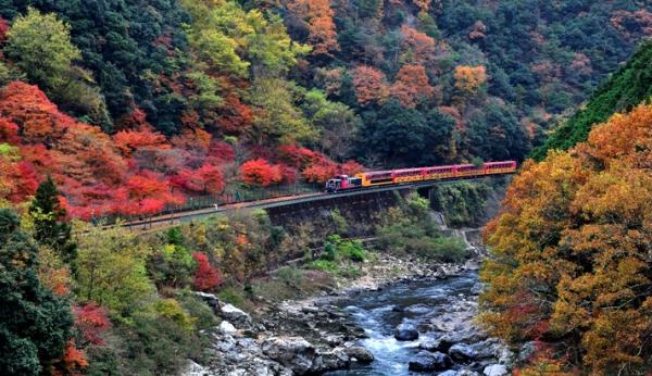 sagano train 3
