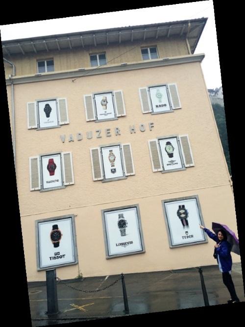 在Vaduz 市区内,可轻易见到跨国大公司得小 总部的招牌林立!