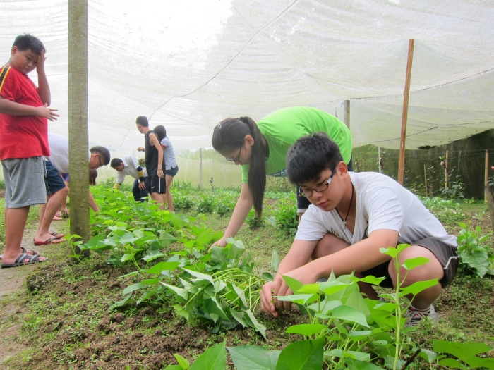农庄接受志工来学习,通过与大自然接触的喜悦,让他们顺天地跟自然学习,目的就是要教育。