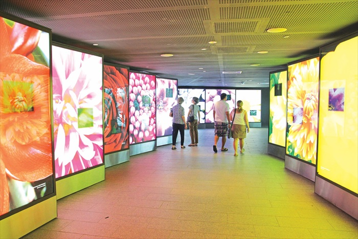 进入花穹前有条学习的走廊。