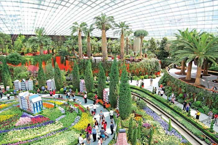 这座位相当于2.2个足球场大的花穹,可帮助你实现一次性看到全球各地稀珍植物的梦想。