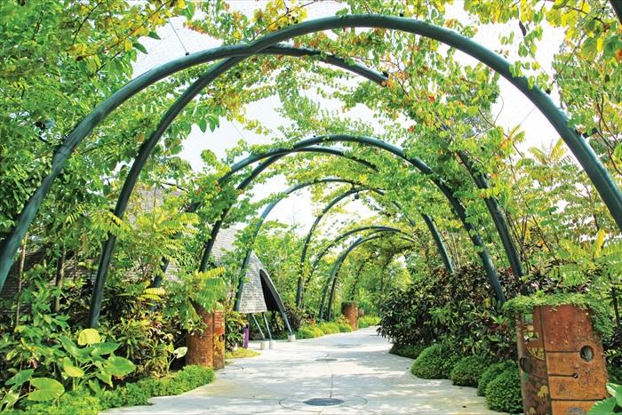 滨海南花园的特色景点包括花穹、云雾林冷室、金园、银园、巨树丛林、文化遗产花园、植物世界、蜻蜓湖和翠鸟湖等。