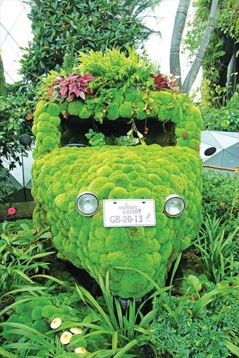 这辆被植物覆盖着的摩多车是不是让你很想驾驶它闯入哪个魔幻世界?