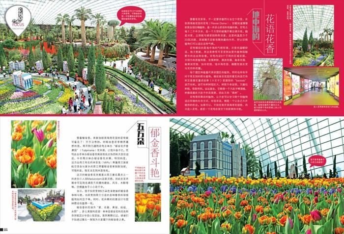 一窥都市    后花园美貌(三)