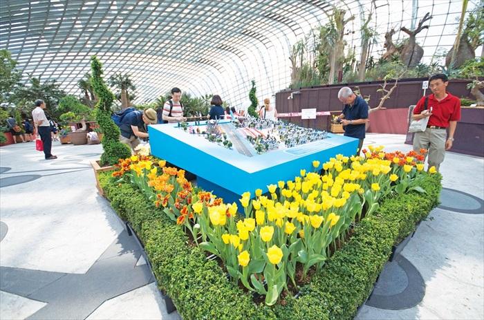 """""""郁金香开香满园""""花卉展大受本地和国外游客欢迎。"""
