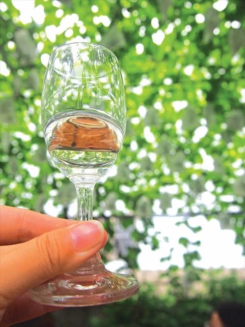 握高脚杯一定要握杯的下方,别让手心的温度与杯中酒接触。