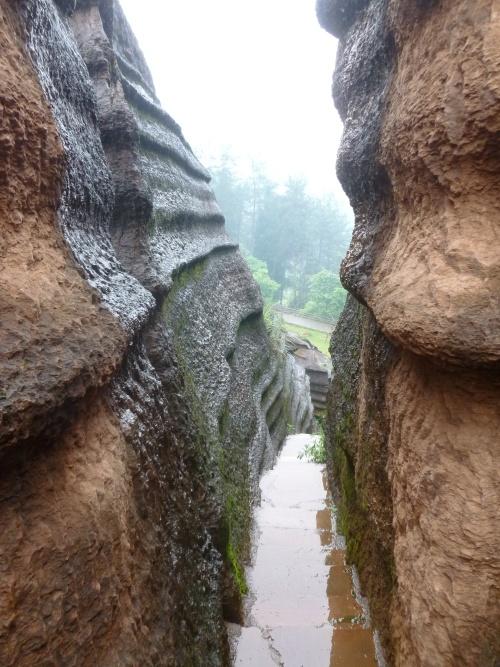 穿梭红石林,感受惊叹的自然美吧!