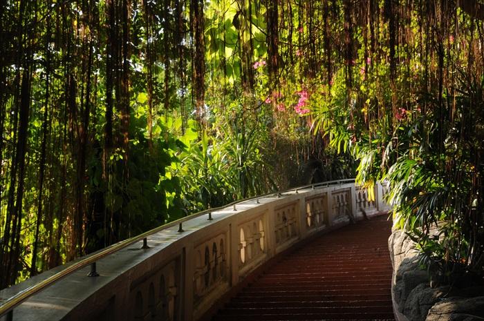 近黄昏时分,走向金山寺的梯级显得静谧优美。