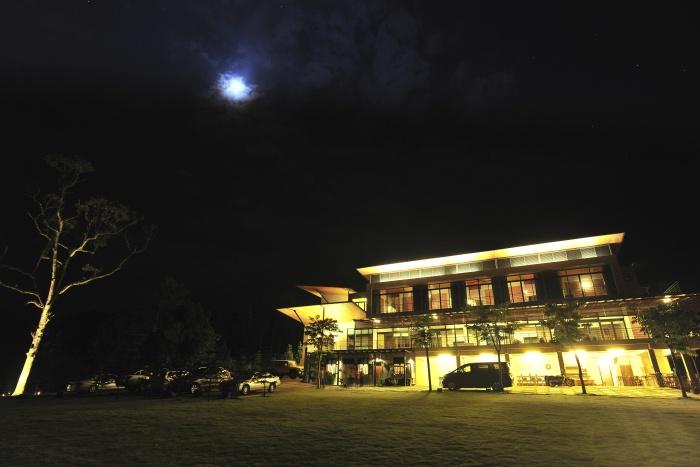 有月光陪伴下的松岩...