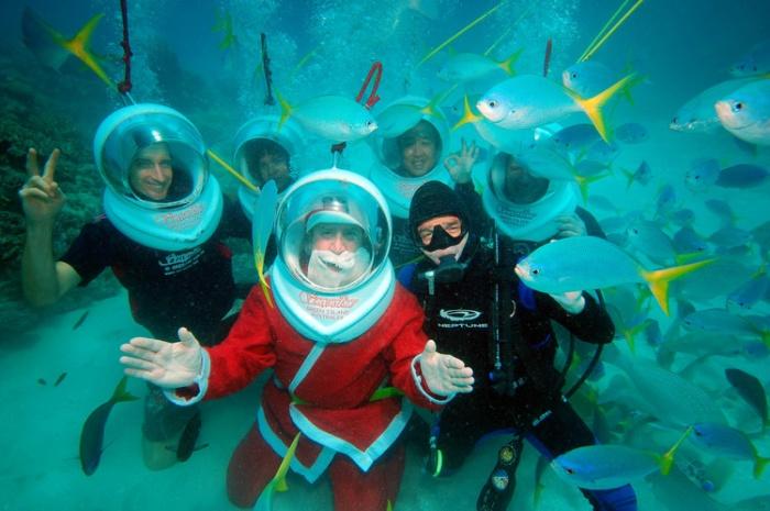 和圣诞老人一同潜水呗!