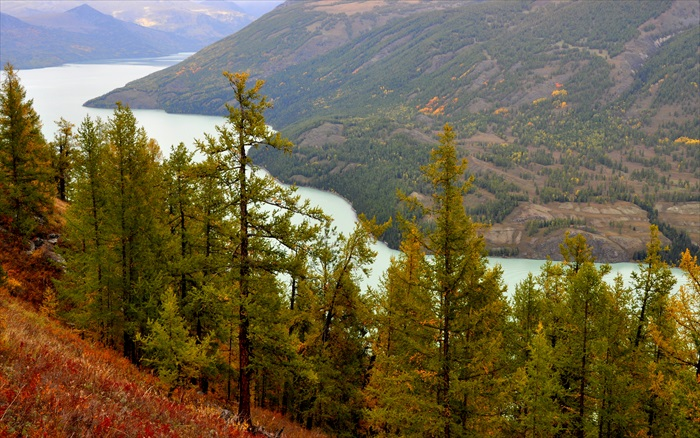 针叶林的点缀让湖景美得让人屏息。