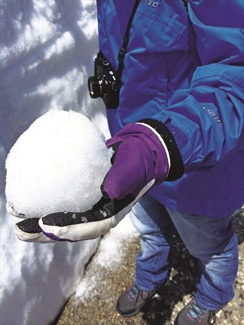 可以玩雪球大战哦!