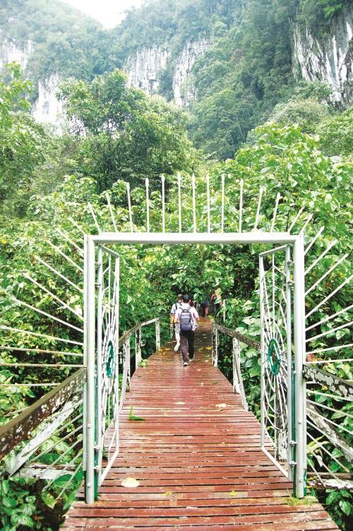 徒步进入姆鲁山森林区。