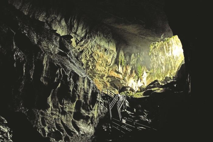 进入姆鲁国家公园,才发现原始热带雨林并没有想象中那般可怕。