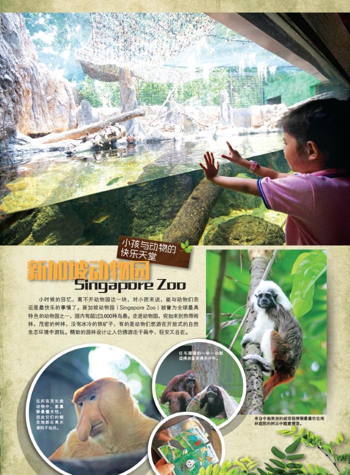 河川生态园VS 新加坡动物园 • 新加坡城市中的雨林世界 (三)