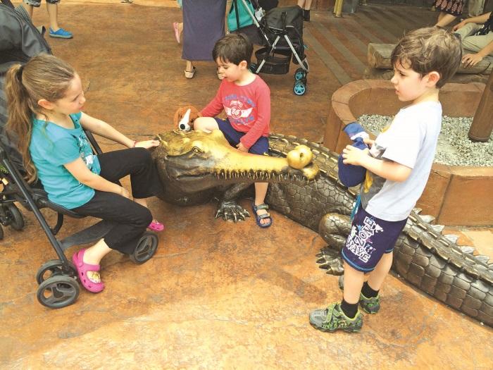 """动物园内的""""假鳄鱼""""也颇受小孩喜爱。"""