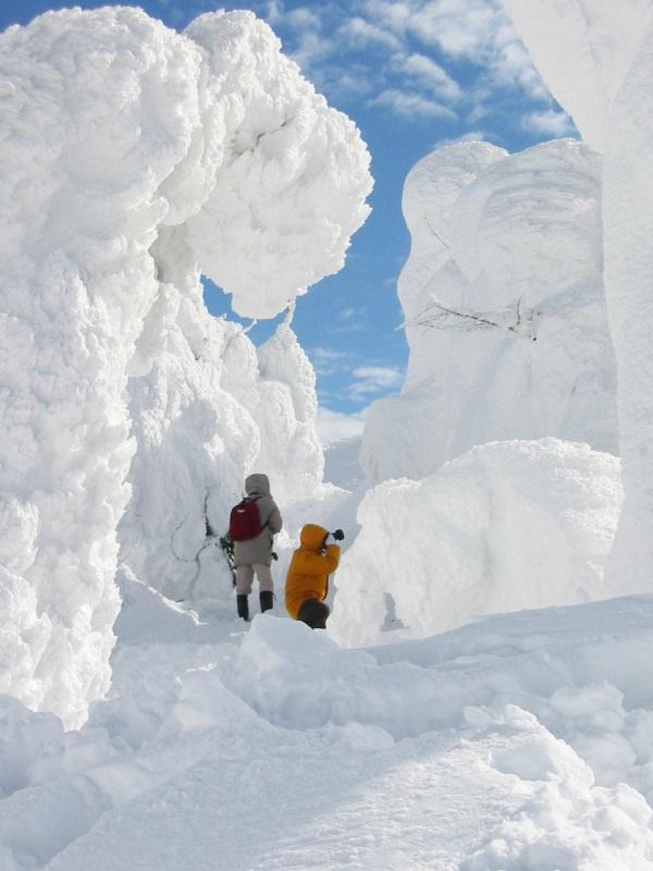 ZAo snow monster