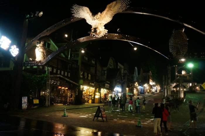 北海道少数民族,爱奴民族将猫头鹰作为幸运物。爱奴工艺品街街道上也设有了好大一只猫头鹰标志。
